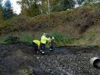 Pond and Bio Swale Cleaning